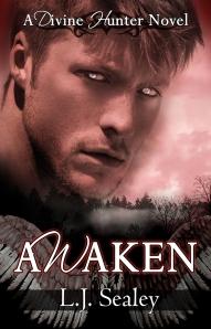 Awaken DH Book1sml
